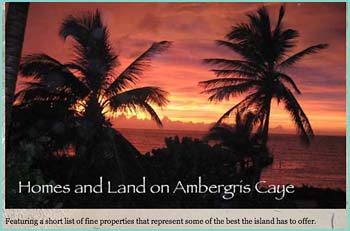 Homes and Land on Ambergris Caye, Belize. Featuring a short list of fine properties that represent some of the best the island has to offer. I would love to talk to you � so feel free to send me your phone number and a good time for me to call. It�s so much nicer to meet that way! Thanks for reading � I hope to see you soon on the white sand beaches of Ambergris Caye!! Homes ... All beachfront, all excellent locations.
