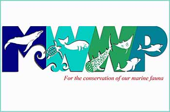 The MWWP facebook site provides a venue for sharing relevant marine wildlife (dolphins, whales, porpoise, dugong, whale sharks, sharks, mantas, turtles etc) sightings, reports, information, issues, and events in the Philippines and beyond.