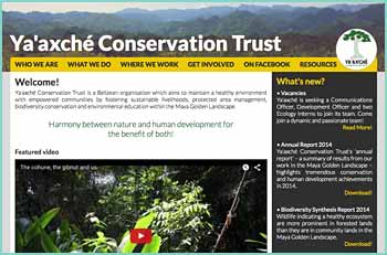 Ya'axché Conservation Trust is a Belizean organisation which aims to maintain a healthy environment with empowered communities by fostering sustainable livelihoods, protected area management, biodiversity conservation and environmental education within the Maya Golden Landscape.