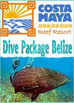 Costa Maya Dive Shop is a full service dive shop specializing in daily diving, SCUBA instruction and snorkeling for San Pedro, Ambergris Caye Belize. Our local Diving and Snorkeling scheduled departures are 9:00 and 2:00, we will pick you up at the dock of your hotel. White Sands Dive Shop is a PADI International Resort Association member and is licensed By The Belize Tourism Board, and is owned and operated by PADI Staff Instructor Elbert Greer