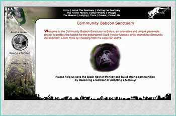 The Community Baboon Sanctuary is a pioneering project in voluntary grassroots conservation. The goal is to sustain the habitat of the Black Howler Monkey (called 'baboon' in the local Creole dialect) while promoting the economic development of the participating communities. The result has been an innovative project in sustainable ecotourism that protects the habitat for the endangered Black Howler Monkey and other species while offering a unique opportunity for visitors to experience the rainforest and witness Black Howler Monkeys in the wild.