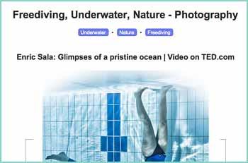 Jayhem's Freediving, Underwater and Nature Photography Blog