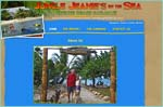"Jungle Jeanies, Belize - where you can combine the Old with the New, Traditional with the Modern, as you experience Hopkins, a beach front Garifuna village, in the South of Belize. It is important to John and Jeanie that your Belizean experience be a memorable and enjoyable one. Their extensive knowledge of the area, the culture, the tours, the tour operators and the people ensures that whether you are a first time traveler to Belize, or an experienced veteran, you will be treated first rate. ""We really appreciate our clients who choose Jungle Jeanie's, By The Sea "" Jeanie adds with a smile. ""When you stay with us, we treat you like family."""